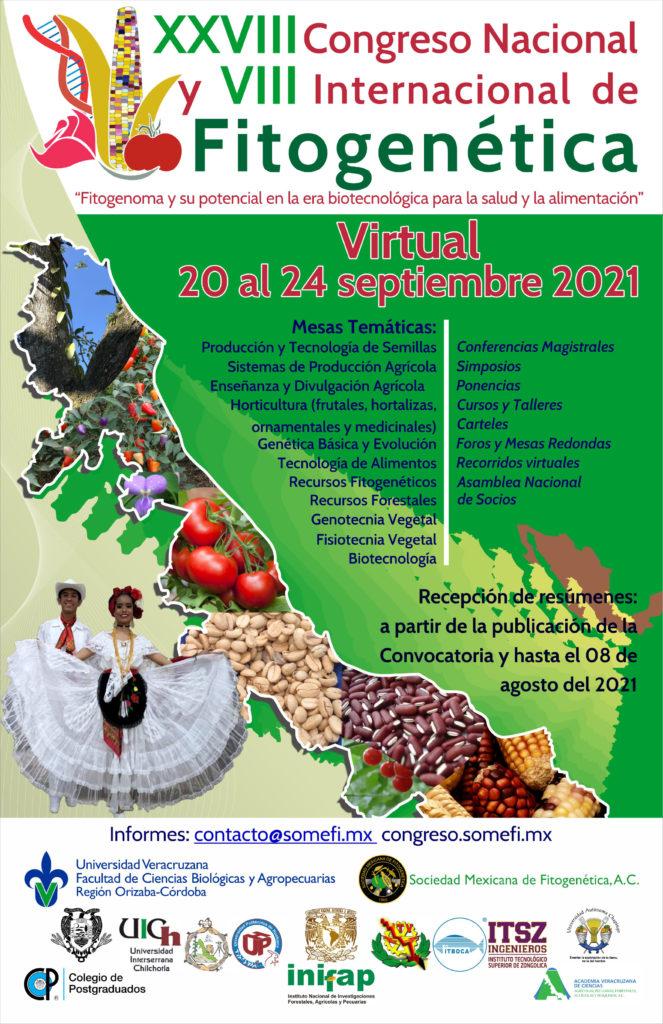 Cartel del congreso SOMEFI 2021